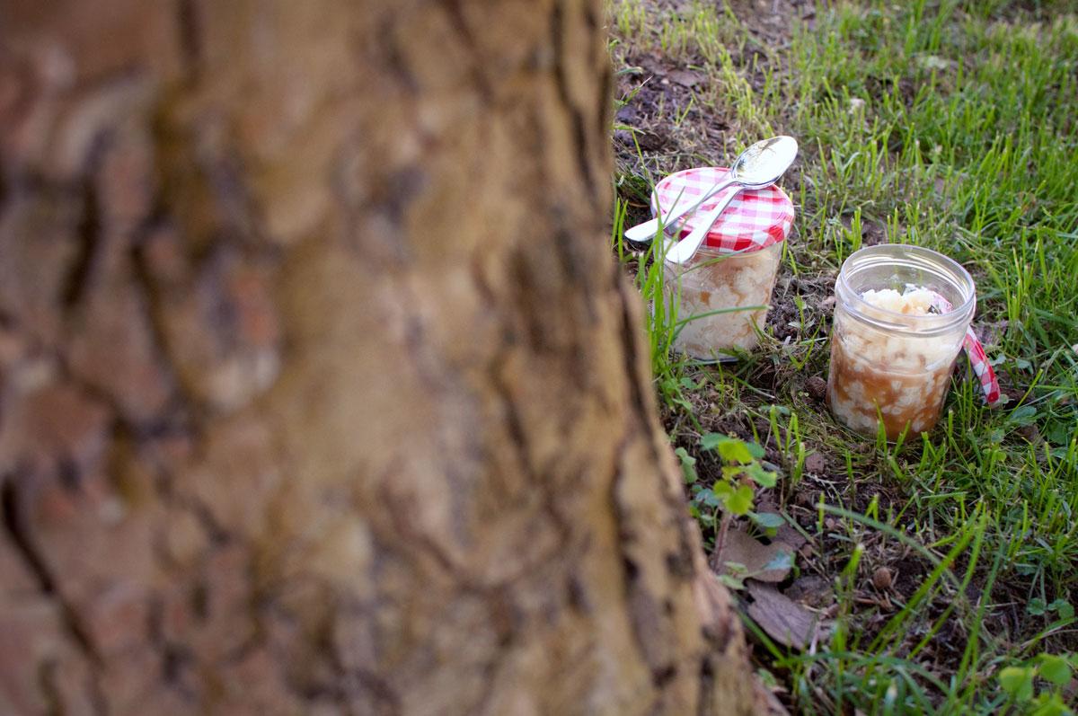 Milchreis im Glas mit Karamell, im Wald, für Picknick